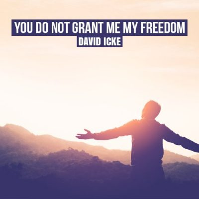 You Do Not Grant Me My Freedom - David Icke