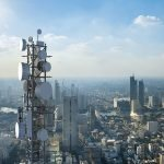 Environmentalists and Scientists on How Cell Towers and 5G Risk Tree Health