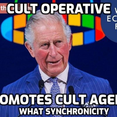Pandemic is chance to reset global economy, says Prince Charles