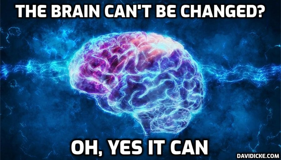 Humans now trust algorithms more than each other, according to new research – David Icke