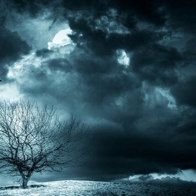 Derrick Broze: The Darkest Winter documentary