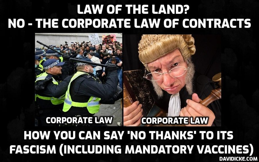 How you can lawfully disconnect yourself, your family and your business from governments and the institutions of law enforcement and no longer comply with 'Covid' fascism. David Icke talks with common law expert John Smith at Commonlawcourt.com. A must-watch for those who choose freedom and want to end this madness. Please share everywhere