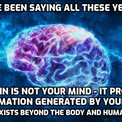 Is Your Mind Confined To Your Brain?