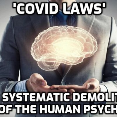 Swedish psychiatrist David Eberhard on the effects of lockdown on a population and on how we feel less and less secure despite living in the safest period in human history - it's called PROGRAMMING