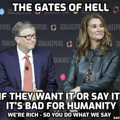 Who Gets Custody of The Gates Foundation? New World Next Week