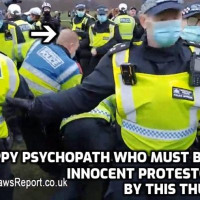 Shocking pictures of Face-Nappy thug kicking London protestor who had done nothing - when the police are the violent criminals you know you're in a fascist state