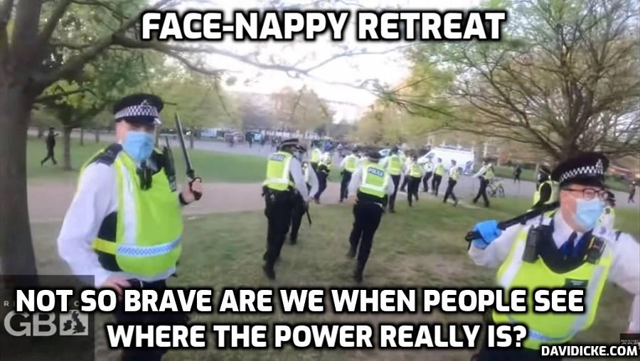 The Face Nappy Retreat - David Icke