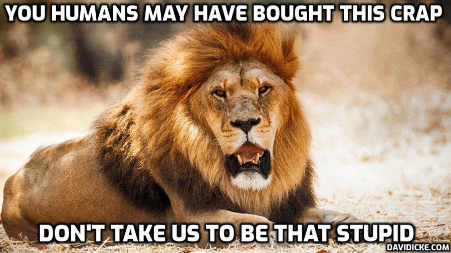 Eight lions 'contract Covid-19' at Hyderabad zoo amid 'coronavirus surge' in India (Don't be silly – Oh, sorry, you are being – the diagnosis was confirmed by a PCR test not testing for the 'virus'. YAWN)