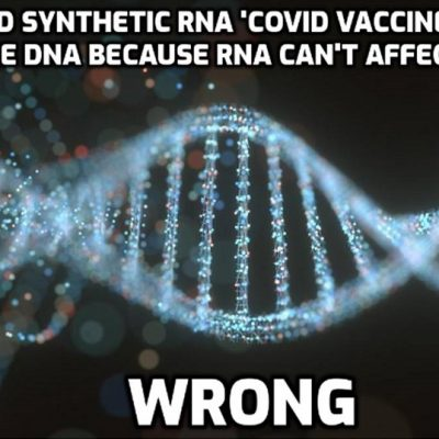 Dr. Robert Malone, Inventor of mRNA Technology, Signals the Worst-Case Scenario About Covid-19 Vaccines