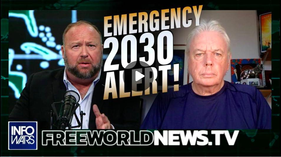 David Icke Issues Emergency 2030 Alert!