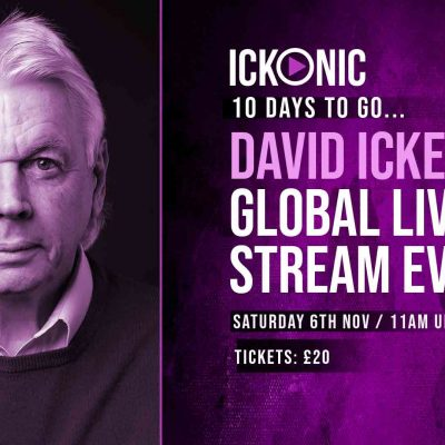 Book your ticket for David Icke's global live stream event on November 6th