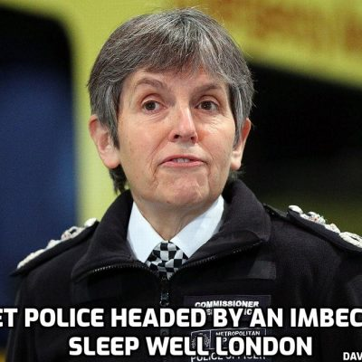 Ludicrous Dick-headed Met Police tell women to flag down bus if they don't trust police - but what would happen to transport if buses were constantly flagged down 24 hours a day?