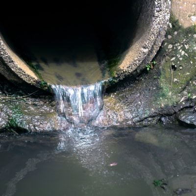 MPs vote to allow water companies to dump raw sewage into rivers because they care so much about the environment